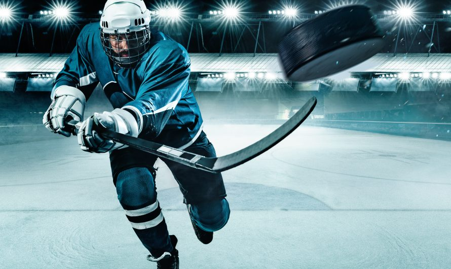 NHL Betting Master – outstanding figures from betting on ice hockey