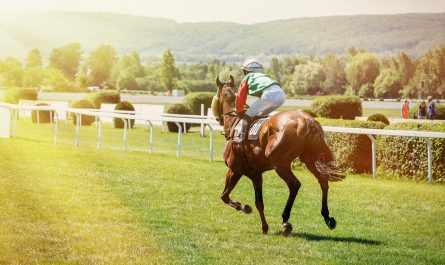 QF Value Tips
