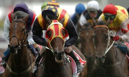 Horse Network Tipster