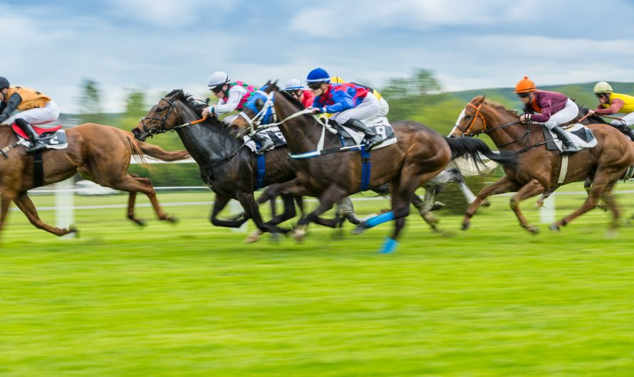 6Pt Plan – solid betting approach from this horse racing tipster