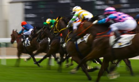 Picture of horses racing